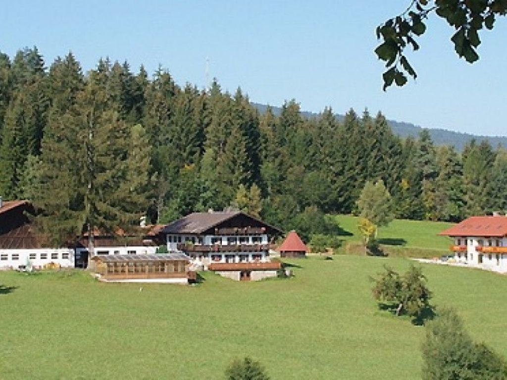 Bauernhof Hienhardter Hof in Achslach - Achslach