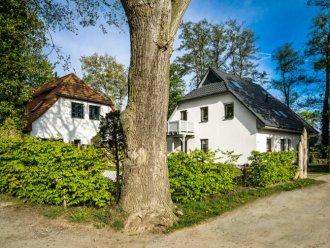 Ferienwohnungen Ferienhauser In Zingst Mieten Fewo24